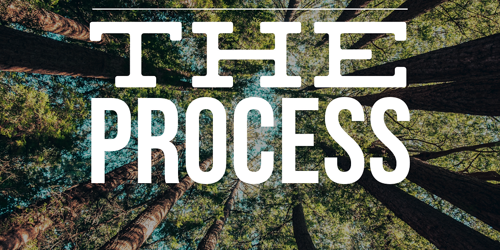Processing the Process (May)