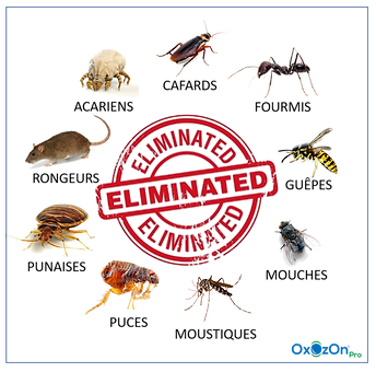 eliminated bugs.png