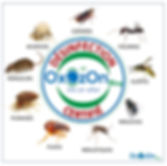 OxOzOn Pro certification stamp nuisibles