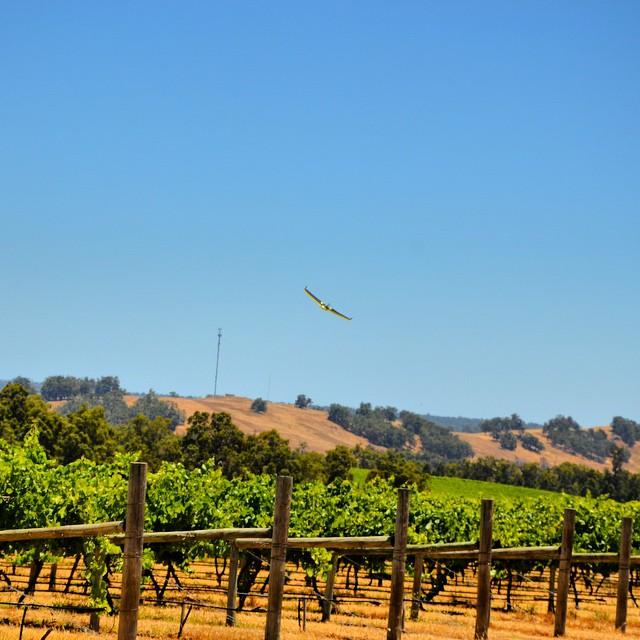 GSM UAV vineyard survey _gsmuav #gsmuav #ebeertk2015 #ebee #ebeertk #ebeertk #trimble #R10 #UAV #dro