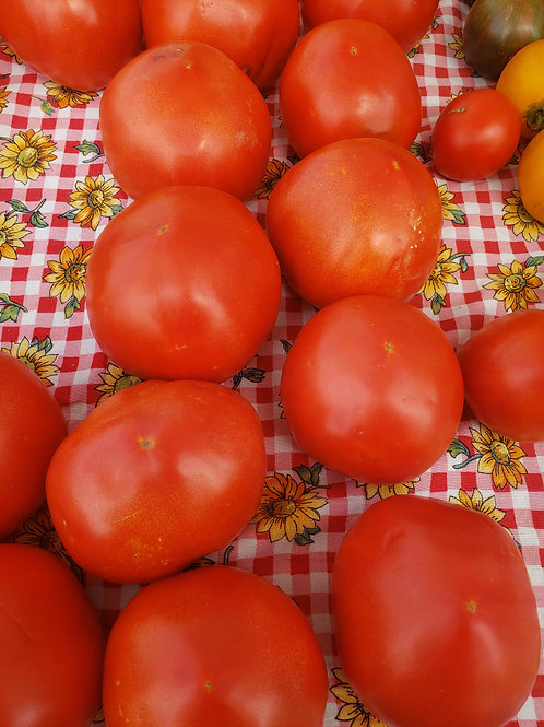 Red tomatoes by the (lbs)