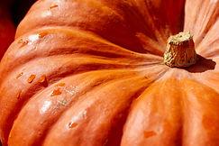 pumpkin-2736964.jpg