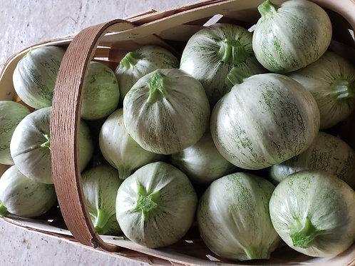 White round zucchini