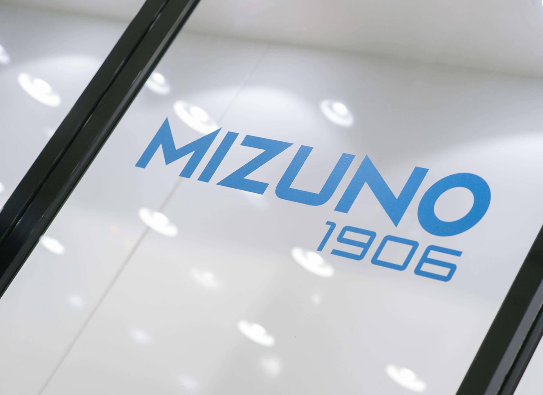Mizuno Shinzo Lab