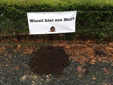 Molloten storten molshoop in tuin Jochem van Gelder