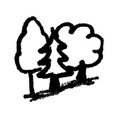 Toggenburg Trees