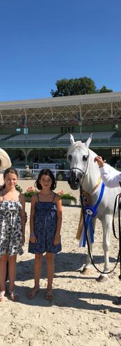 Arabian Horse Show Vichy
