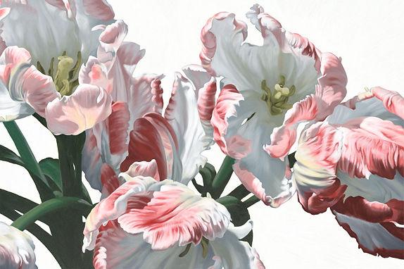 Tulips-1520.jpg