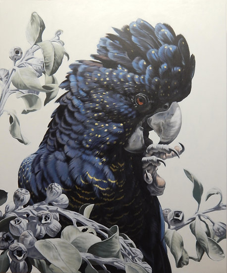 Black Cockatoo and Tetra giclee print, editions of 50 (canvas),20/20