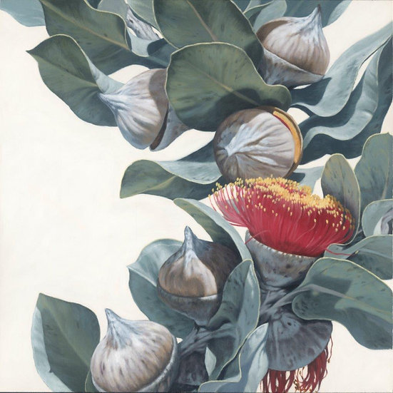 Macrocarpa Gums 0916 giclee print, editions of 99/50 (canvas), 20 (paper