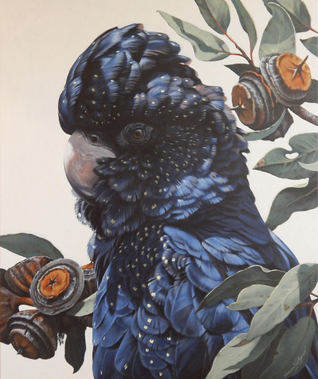 Black Cockatoo and Youngiana giclee print, editions of 50 (canvas),20/20 (paper)