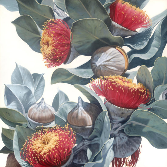 Macrocarpa Gums 0816 giclee print, editions of 99/50 (canvas), 20 (paper)