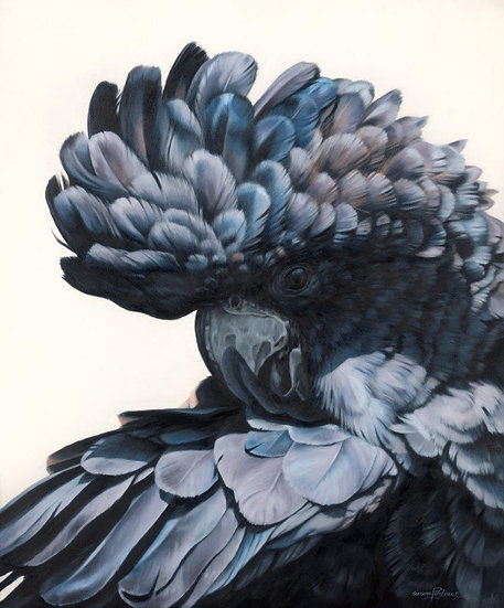 Black Cockatoo III giclee print, editions of 50 (canvas), 20/20 (paper)