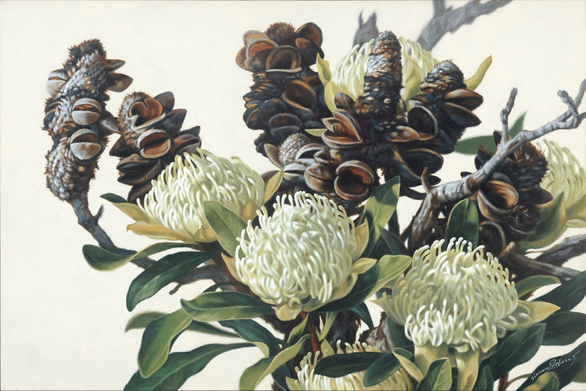 'Bush 1',Waratah & Banksia 1915 giclee print editions of 99 (canvas), 20 (paper)