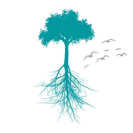 Crio raízes para desenvolver asas