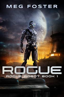 Book 1:  ROGUE