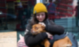 Homeless with Pets picture.jpg