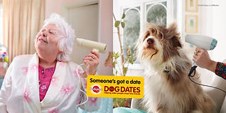 pedigree_dog_dates_blowdry-1024x512.jpg