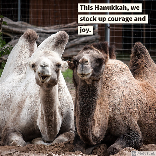 Happy Hanukkah 2020