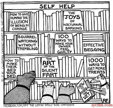 Library and Dogs Cartoon.jpg
