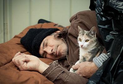 HomelessKitten_shutterstock_44573680_for