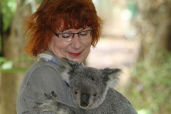 koala-185736_1920.jpg