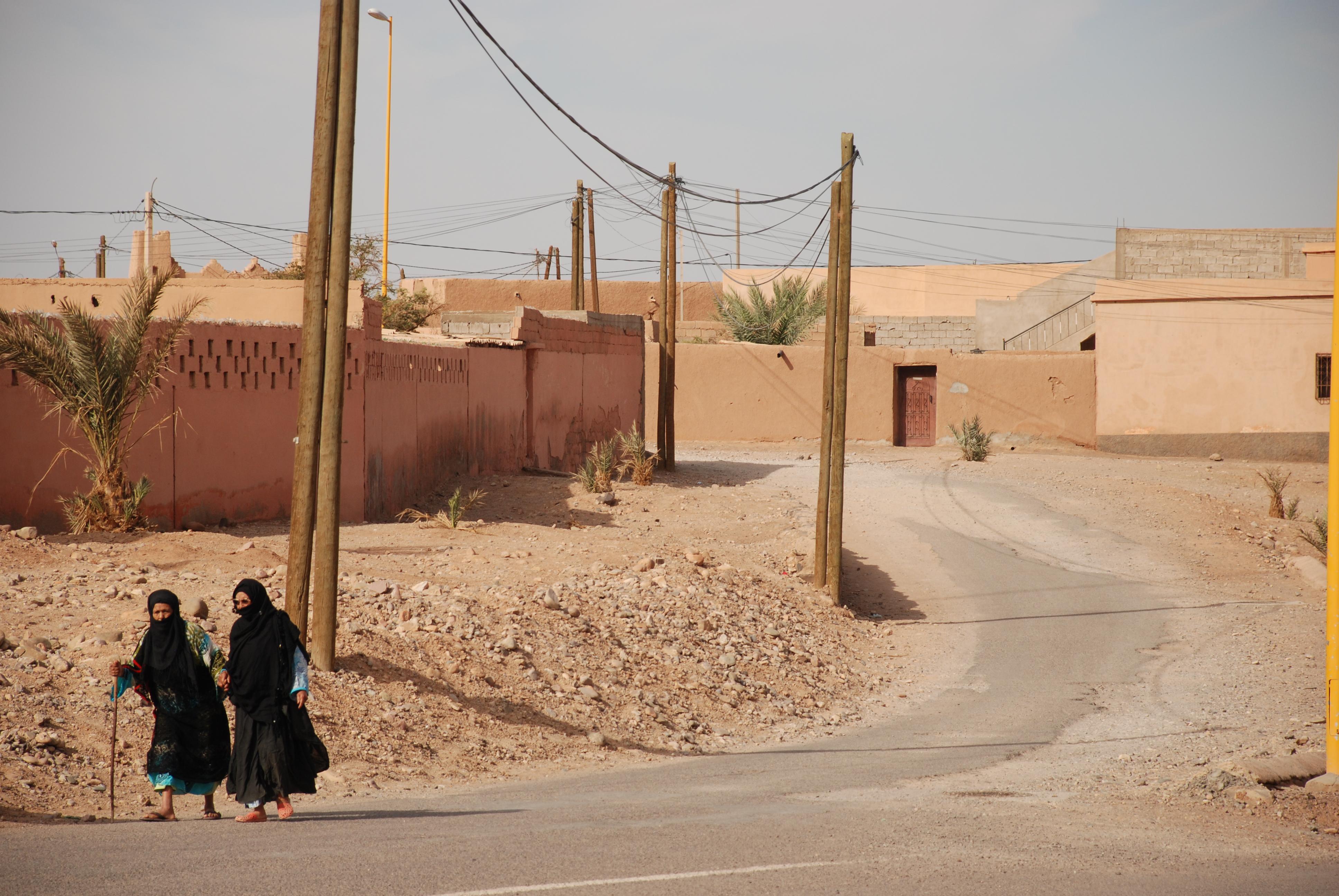 Saharan Life