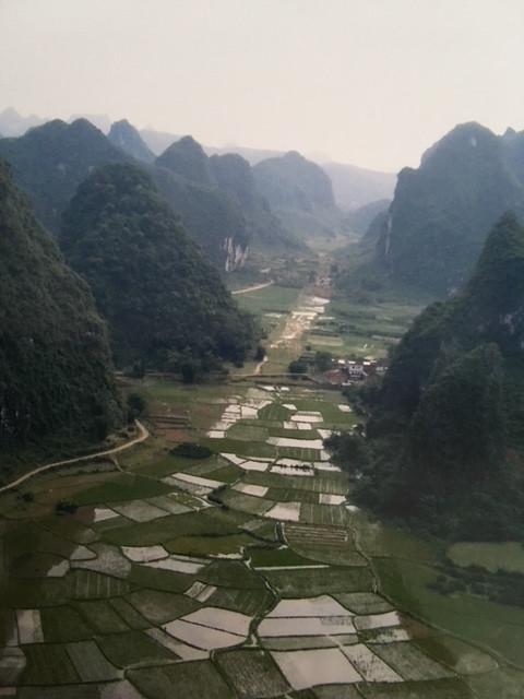 Rice Fields, Yangshou, China by Panni Loh