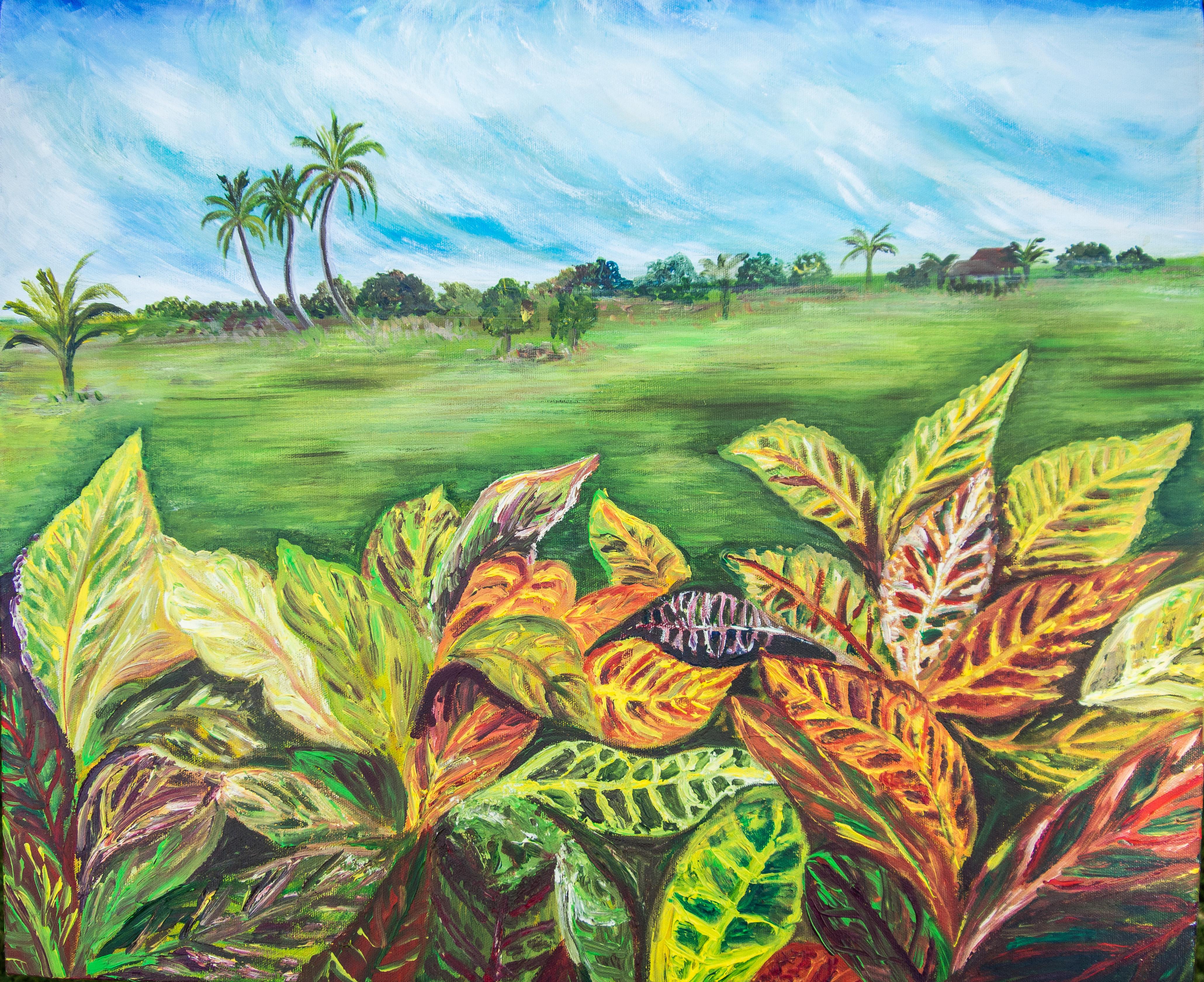 Kedah padi fields