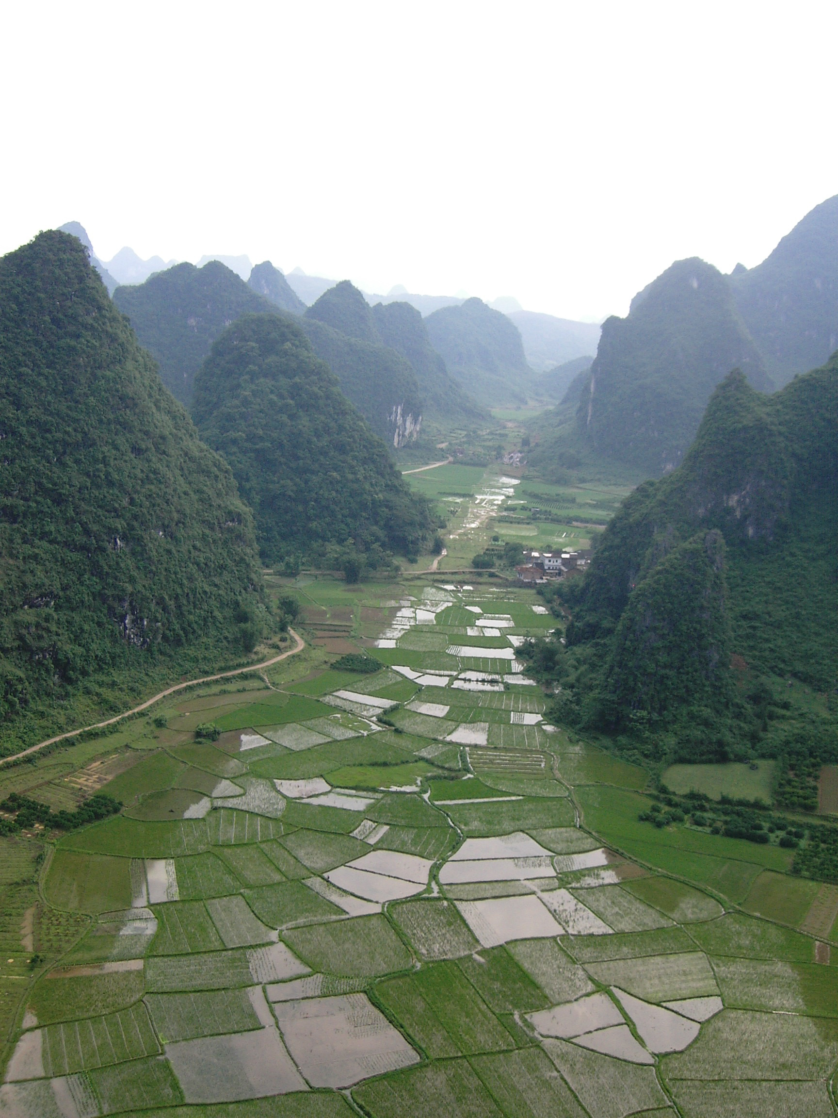 Aerial View Rice Fields Yangshou
