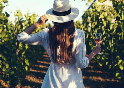 Photo_2cv_LaDorgonne_Provence.jpg