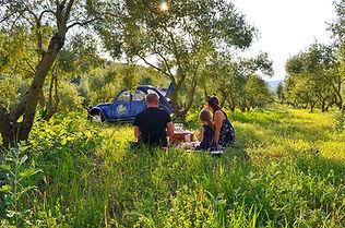 Photos_2cv_apero_Provence.jpg