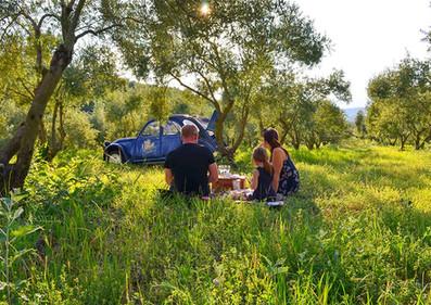 Visiter des vignobles Luberon