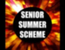SeniorSummerScheme.png