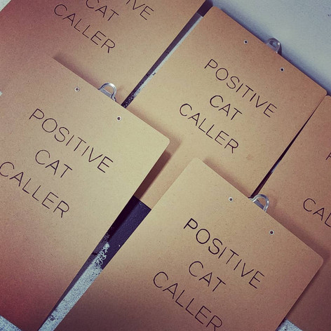 The clipboards printed with Positive Cat Caller, 2019