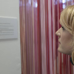 A visitor reading the explanatory text before entering, 2019