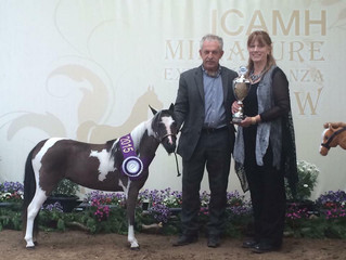 Supreme Champion Mare - ERL Whisper