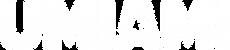 Neige (palette officielle).png