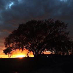 sunset - Copy