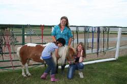 horseca5