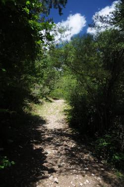 chemin riviere 2