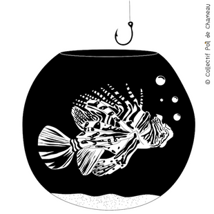#1-Poisson.png