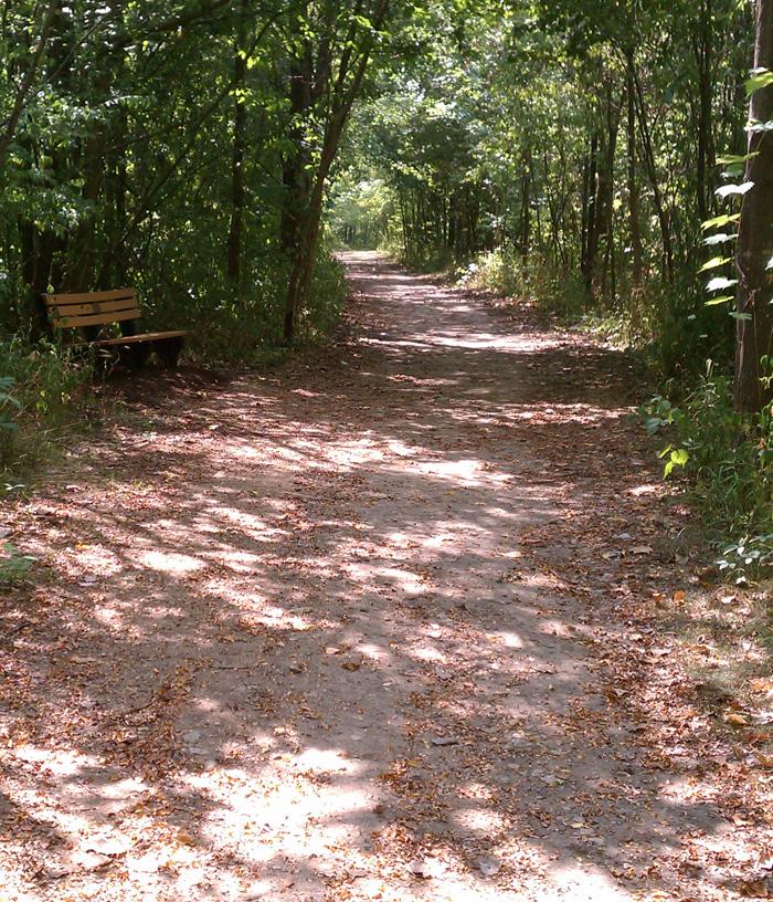 Blanton Woods