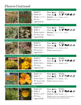 US FISH & WILDLIFE NATIVE PLANT GUIDEEXC