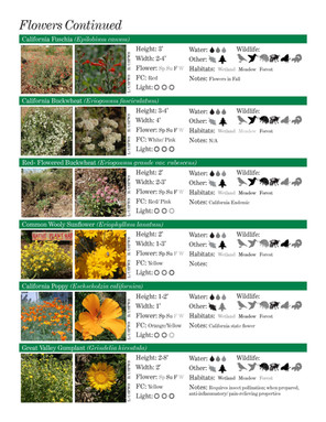 US FISH & WILDLIFE NATIVE PLANT GUIDEEXC