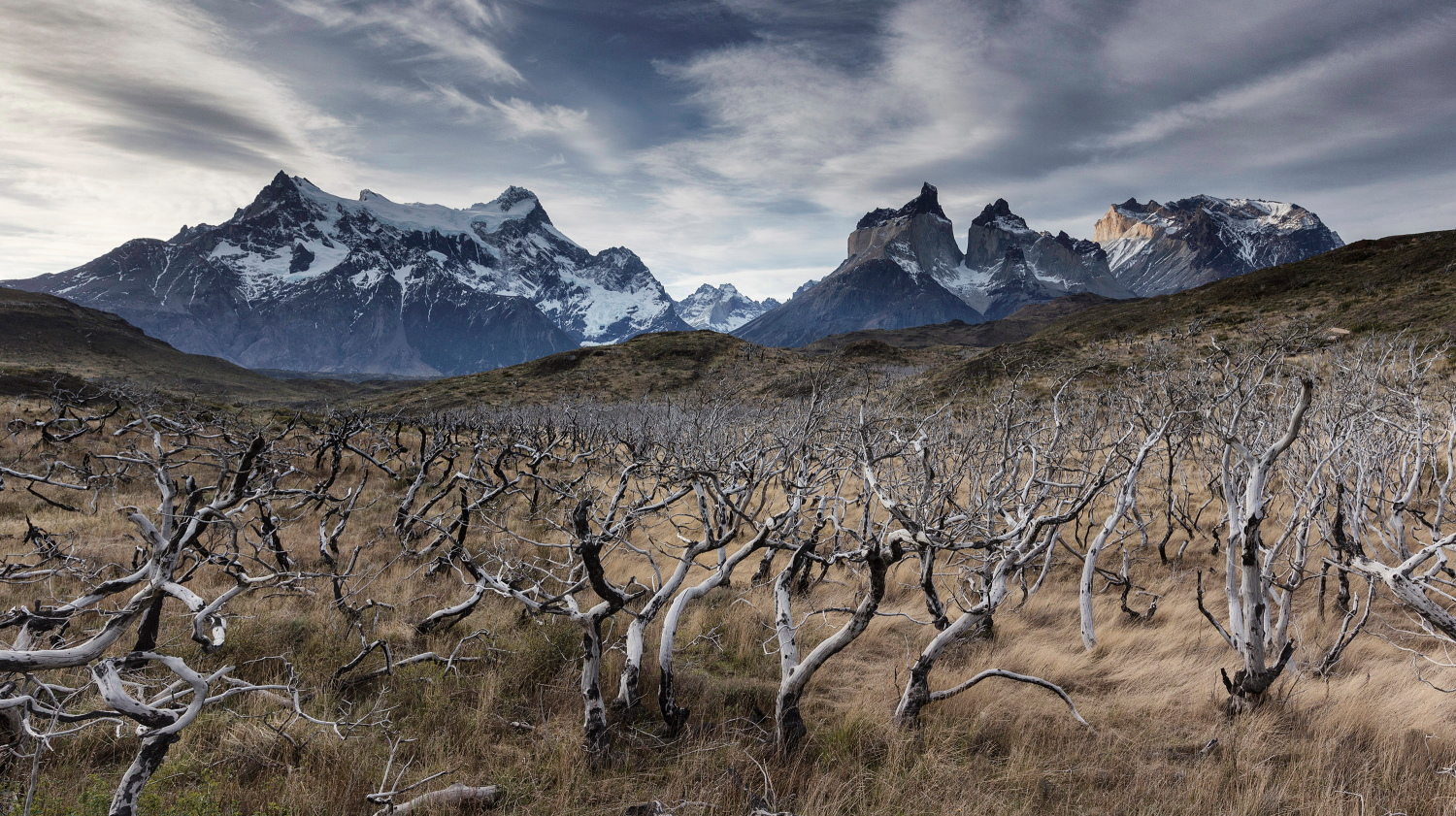 Torres Del Paine National Park, Chile_