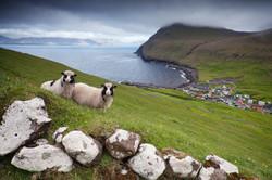 Gjogv, Faroe Islands_