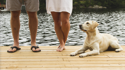 Sienna decking used on many of our docks is a beautiful, cost effective and durable product!