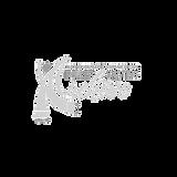 NAARSA Transparent Logo for IP Website.png