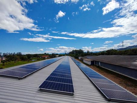 Energia solar fotovoltaica: como funciona?